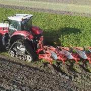 Nedpløjning af efterafgrøder